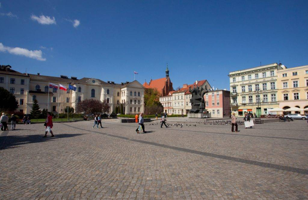 studenci na rynku pracy Bydgoszcz